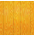 Light Wooden Texture for Background vector image