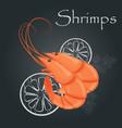 boiled shrimps cooked tiger prawn shrimps vector image vector image