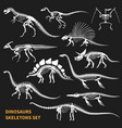 dinosaurs skeletons chalkboard icons set vector image vector image