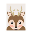 pretty deer portrait cartoon card bright backdrop vector image vector image