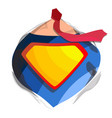 superhero logo diamond shield symbol shape badge vector image vector image