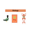 assembly flat icons biology frog bird flowers vector image vector image