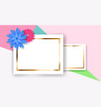 background with rectangle frames and flowers vector image