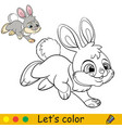little rabbit coloring with colorful template vector image