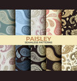 paisley pattern collection vector image
