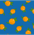 seamless pattern grapefruit on blue background vector image