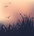 Sunset with grass and flying seagulls vector image vector image