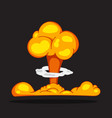 bomb explosion or nuclear mushroom vector image vector image