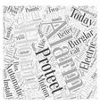 burglar alarm system manufacturer Word Cloud vector image vector image