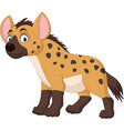 cute hyena cartoon vector image vector image