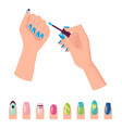 hands and nail polish banner vector image