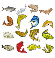 marine life cartoon set vector image