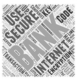 Security Measures Taken by Internet Banking vector image vector image