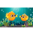 Two puffer fishes under the sea vector image