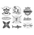 elements for labels or badges surfing vector image