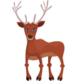 Angry deer vector image
