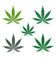 cannabis or marijuana leaf icons set vector image