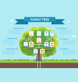 cartoon family tree infographic card poster vector image
