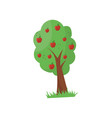 cartoon fruit tree with ripe red apples organic vector image
