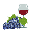 grapes and a wine glass vector image vector image