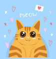happy valentines day with cute cat love vector image