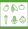 set of icons about some vegetables vector image