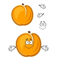 Cartoon cute apricot fruit character with fuzzy vector image vector image