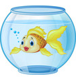cartoon golden fish in the aquarium vector image