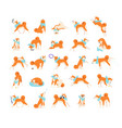 collection of dog performing everyday activities vector image vector image