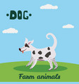cute dog farm animal character farm animals vector image vector image