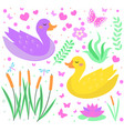 cute duck set objects collection design elements vector image vector image