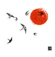 flying swallow birds and big red sun on white vector image vector image