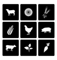 Rural icons set vector image