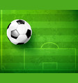 soccer ball with green glass field vector image