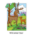 children colorful deers for coloring vector image