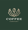 coffee bean tree leaf sprout logo icon vector image vector image