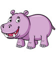 cute hippo smiles on white background vector image