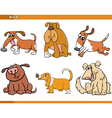 dogs characters cartoon set vector image vector image