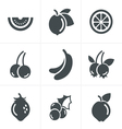 Fruit Icons Set Design vector image vector image