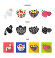 fruit vegetable salad and other types of food vector image vector image