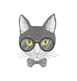 Hipster cat with yellow eyes vector image