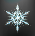 Beautiful Snowflake Icon vector image vector image
