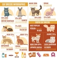 Cats infographics set vector image vector image