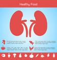 healthy food template vector image vector image