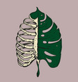 monstera leaf with rib cage vintage apparel print vector image vector image