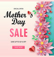 mother s day sale banner with beautiful chamomile vector image