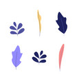 plant leaves set - decorative natural and floral vector image