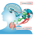 thyroid system poster vector image vector image