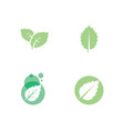 mint leaves flat icon vector image vector image