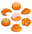 set of bread rolls isolated on white vector image